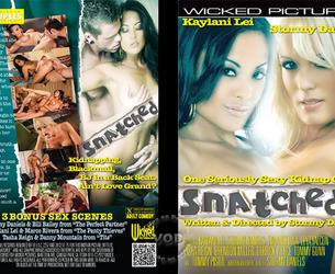 Snatched (Stormy Daniels, Wicked Pictures) [2012 g., Facial, Busty, MILFs, HDRip, 1080p]